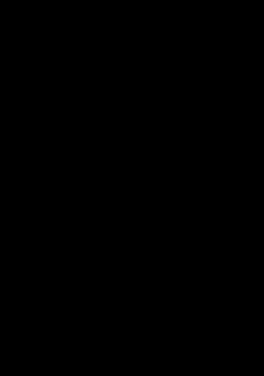 renovera innerdörrar - Isodoor cover, svart
